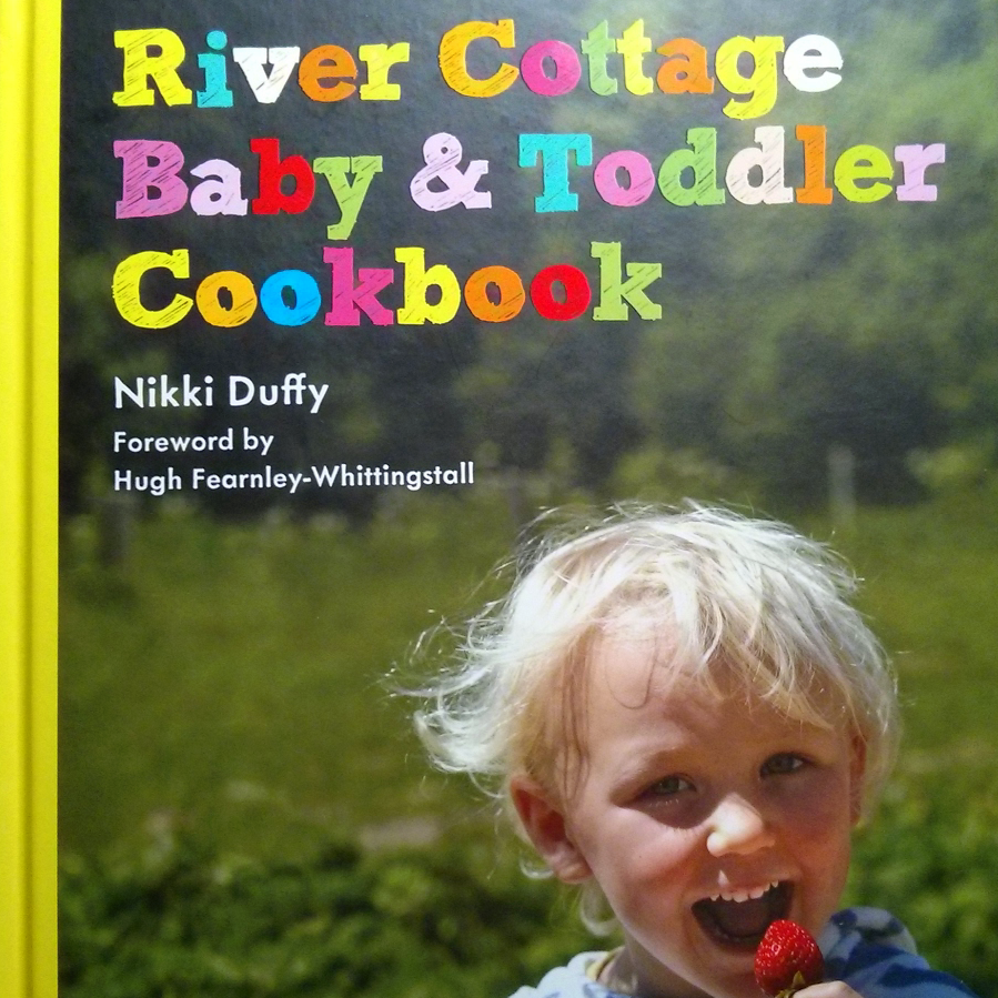 Not a review of the River Cottage Baby & Toddler Cookbook